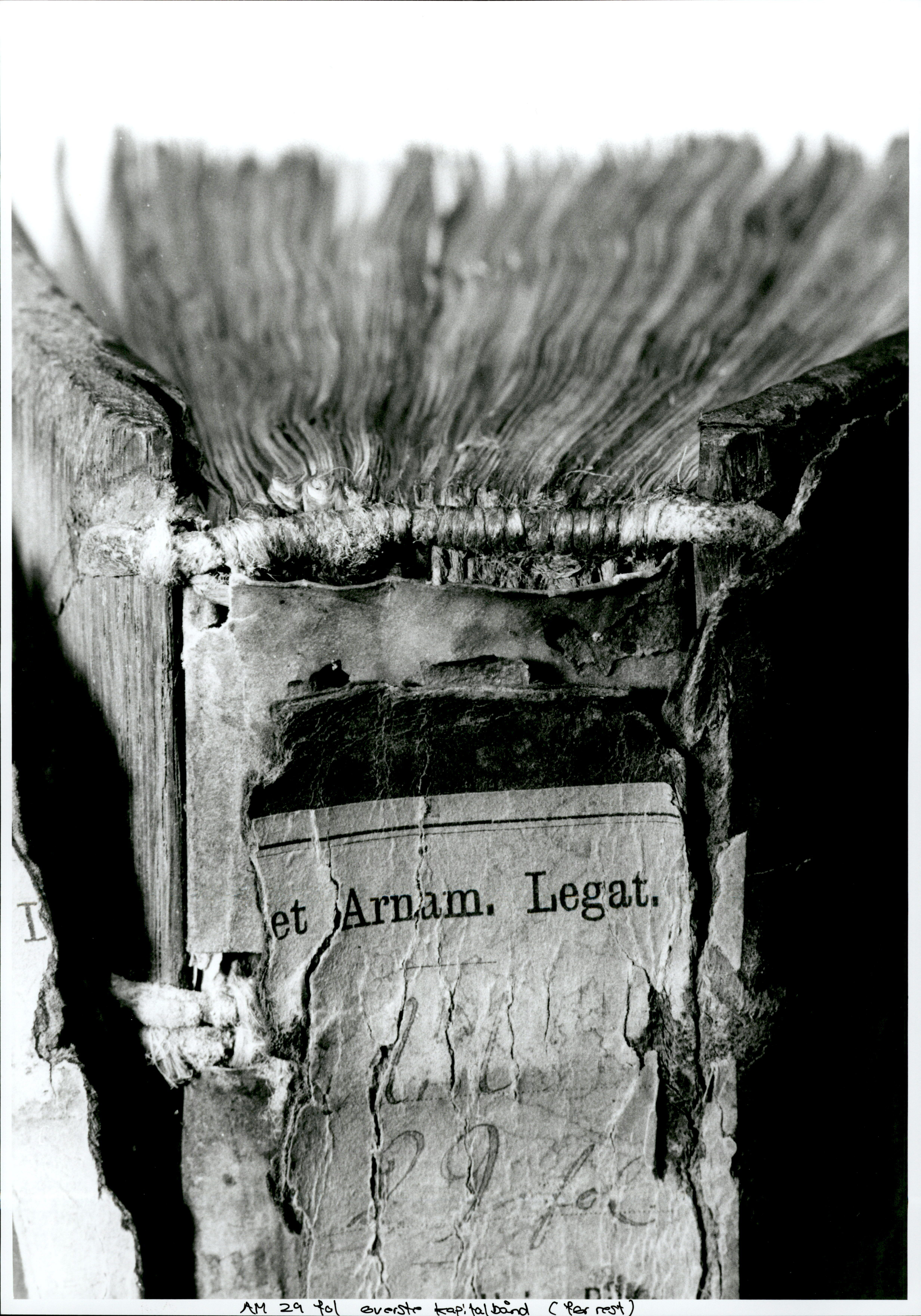 Image of book spine (Digital Collections)
